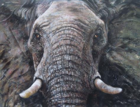elephant -  Oberbulle